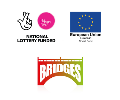 Bridges Project | Ideal for All page banner image